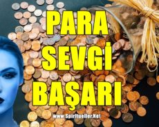 Para,Başarı Ve Sevgi İçin Kış Ritüelleri