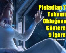 Pleiadian Yıldız Tohumu Olduğunuzu Gösteren 9 İşaret