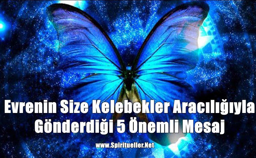 Evrenin Size Kelebekler Aracılığıyla Gönderdiği 5 Önemli Mesaj