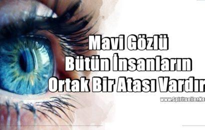 Mavi Gözlü Bütün İnsanların Ortak Bir Atası Vardır