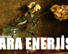 Evde Ne Tür Şeyler Para Enerjisini Engeller