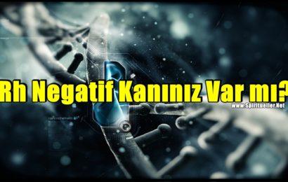 Rh Negatif Kanınız Var mı? Yeni Teori DNA'nızın Dünya'dan Gelmediğini Gösteriyor