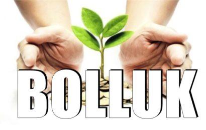 Hayatınıza Para Ve Daha Fazla Bolluk Çekmenize Yardımcı Olacak 5 Önemli Sır