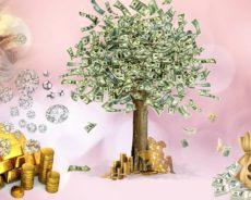 Parayı Evinize Çekmenin En Etkili Yolu