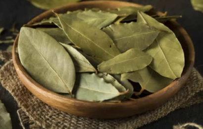 Defne yaprağı, Tarçın ve Mutfağınızda Bulunması Gereken Diğer Güçlü Tılsımlar