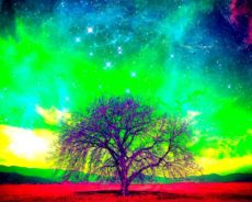 Evrenin Sizinle İletişim Kurmasının 6 Yolu – Dinliyor musunuz?