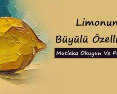 Limonun Büyülü Özellikleri – Mutlaka Okuyun Ve Paylaşın!!!