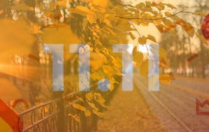 Kasım Ayı Melek Numerolojisi:  2020'de 11.11 Tarihi Ne Diyor