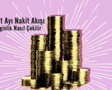 Şubat Ayı Nakit Akışı: Zenginlik Nasıl Çekilir