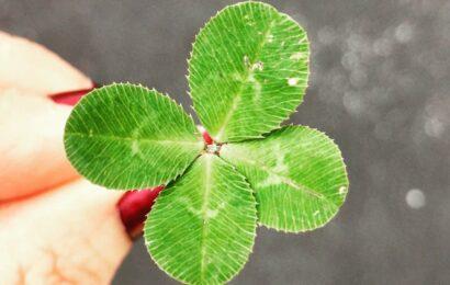 İyi Şansı Artırmanın 5 Etkili Yolu