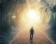 Hayatınızı Değiştirecek 7 Adım