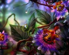 Nazara Ve Kötülüklere Karşı Koruyan Bitkiler