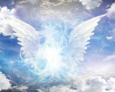 İçgüdü Duygusu: Ruh Rehberlerinden ve Koruyucu Meleklerden Gelen Mesajlar