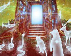 Hayvanlar Ve Ruhsal Evrimleri